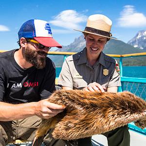 Ranger showing animal fur to visitor