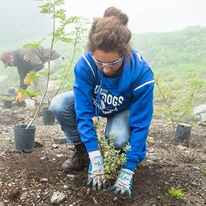Girl planting in Glacier National Park