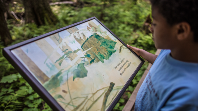 A young child looks at an interpretive sign about forests in Glacier National Park