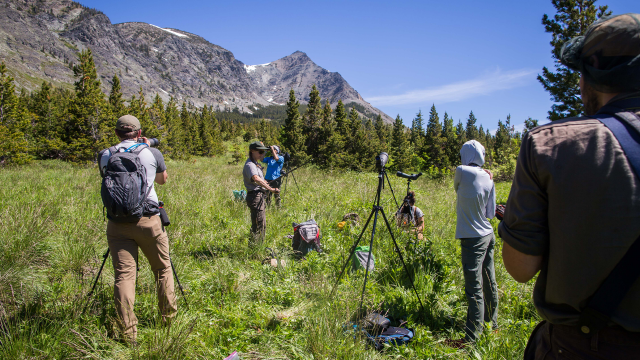 A team of Montana Conservation Corps members and Citizen Science Program coordinators record data outside during mountain goat surveys