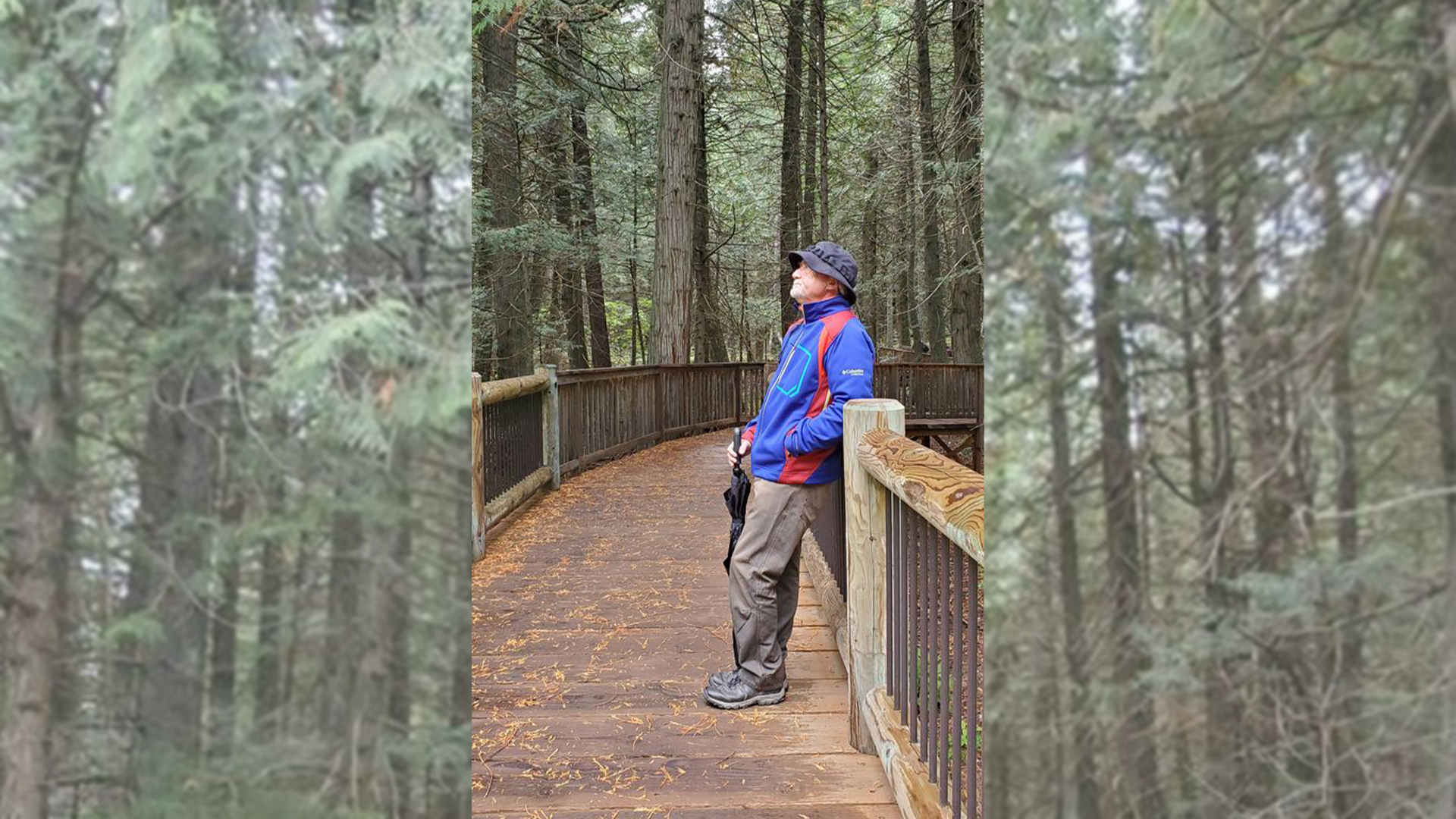 A man stands on a boardwalk trail in a forest