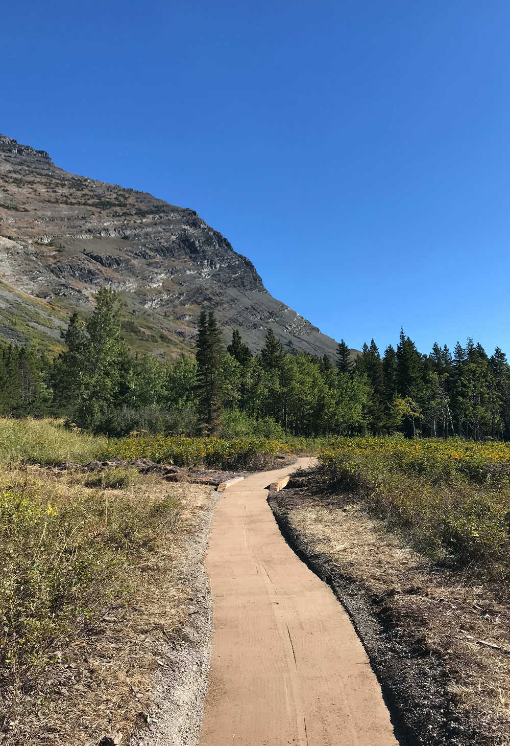 The new accessible section of Swiftcurrent Trail in Many Glacier