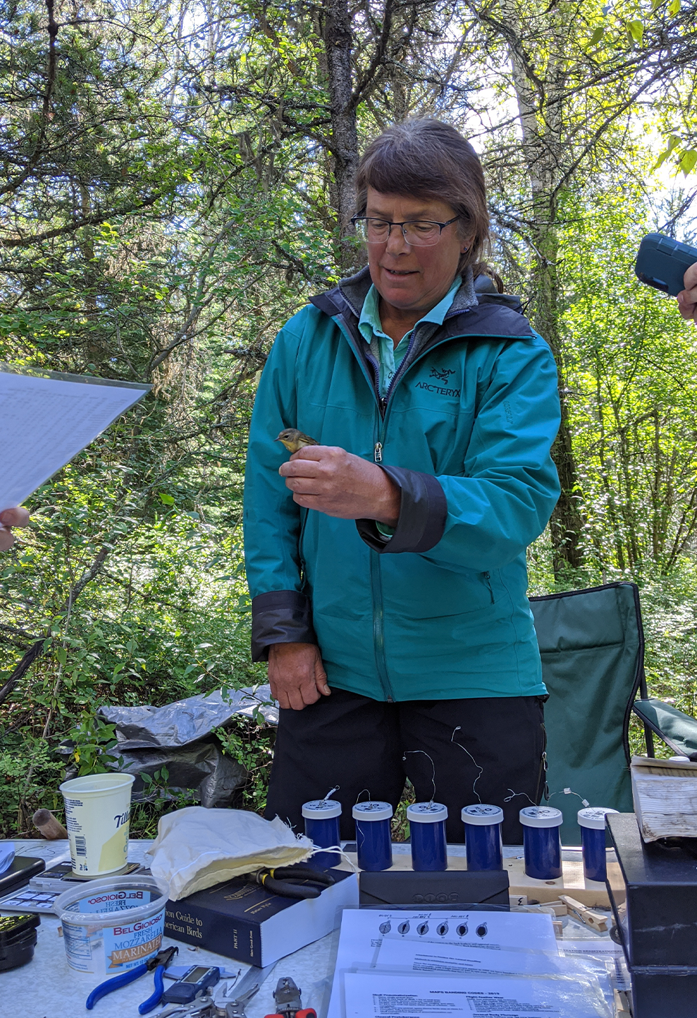 A researcher holds a small bird while studying birds in Glacier National Park